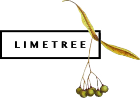 Logo Limetree